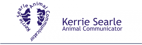 Kerrie Searle - International Animal Communicator