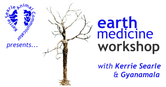 Earth Medicine Workshop, with Kerrie Searle, Animal Communicator - www.animal-communicator.com.au